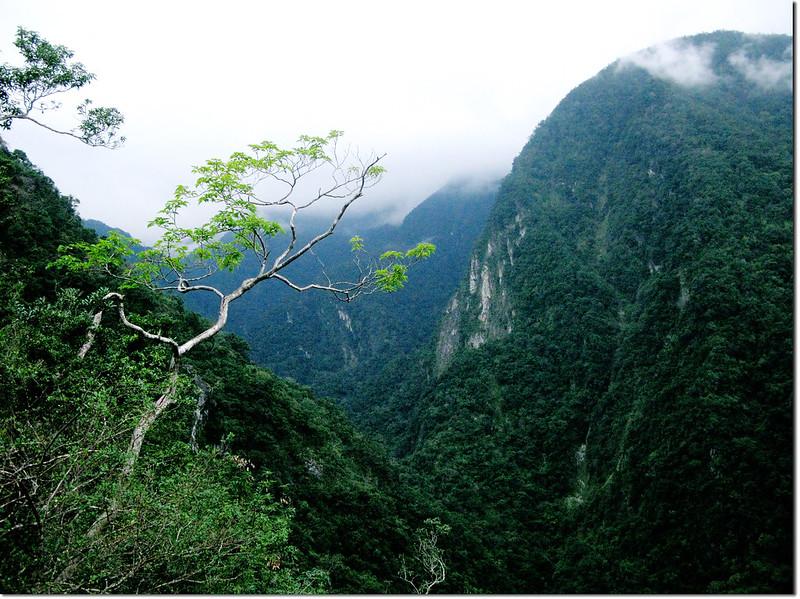 登山途中山景 6