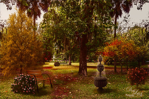 Image of a park in Savannah, Georgia