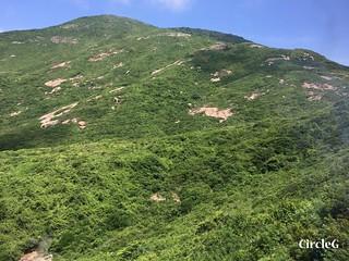 CIRCLEG 香港 遊記 筲簊灣 鶴咀 巴士 (8)