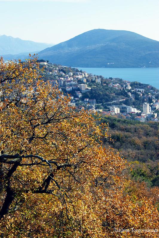 Вид  в сторону Херцег Нови