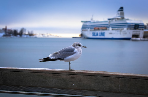 suomenlina-ferry-1