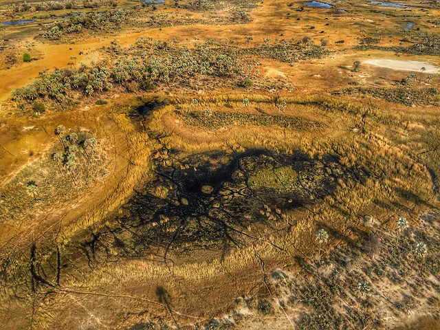 El Delta del Okavango (vista aérea en avioneta)