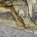 Durdle Door geology