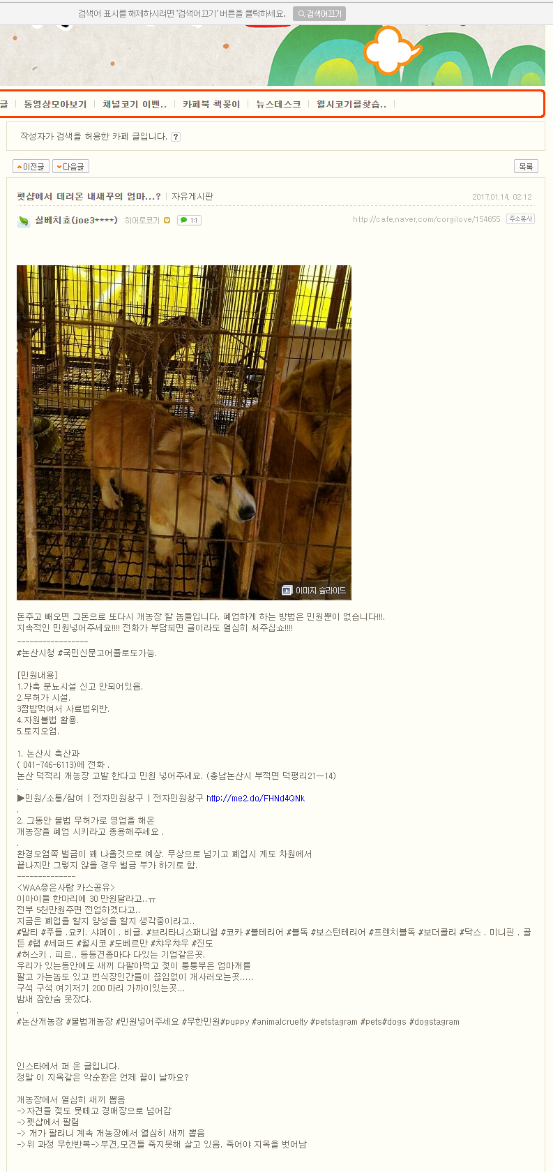 Nonsan Deokjeok-ri Dog Farm Naver post 011417