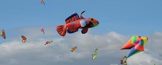 Kites-e1480052255273