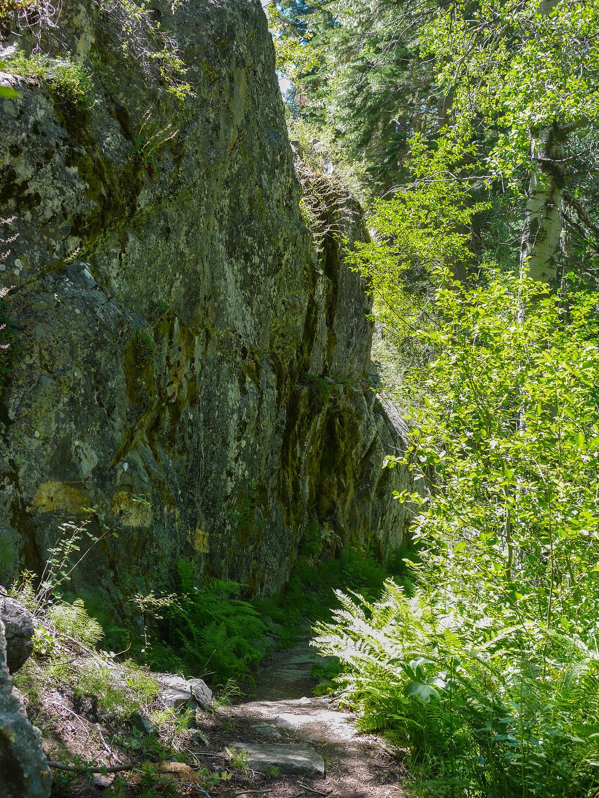 Fish Creek Trail