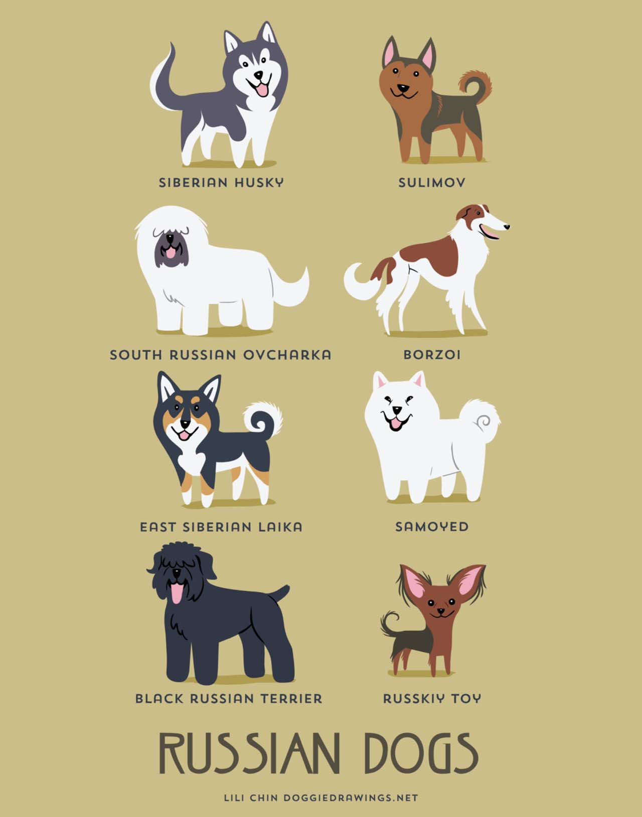Origin Of Dogs: Cute Illustration By Lili Chin Show Where Dog Breeds Originating From #19: Russian Dogs