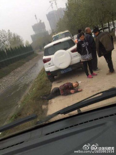 图片自陕视新闻