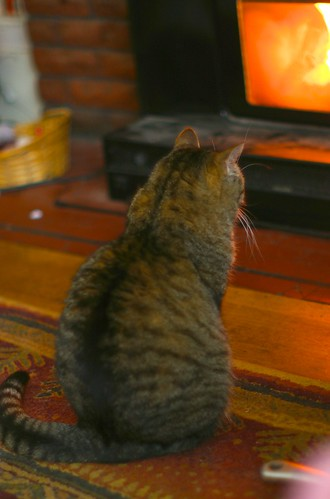 Mavis sits by the fire