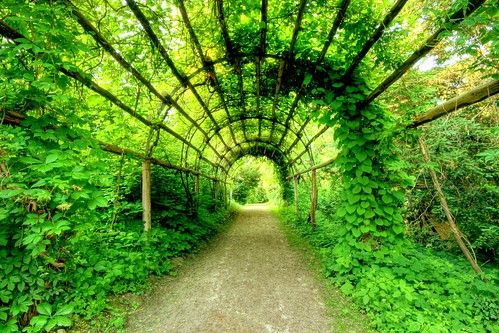 plant tunnel | by extranoise