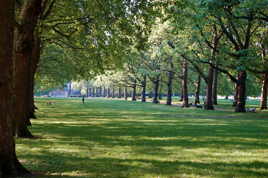 green park trees another view towards piccadilly. Black Bedroom Furniture Sets. Home Design Ideas