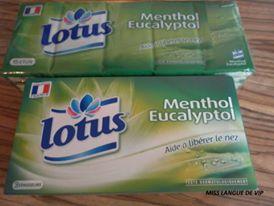 menthol lotus