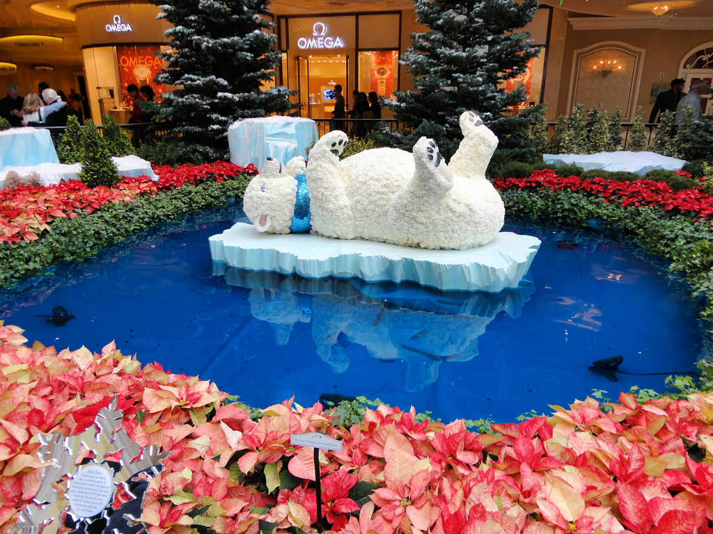 Botanical Gardens Bellagio Hotel And Casino Las Vegas N