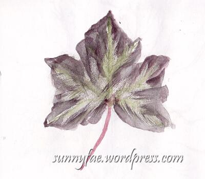 purple-ivy-leaf