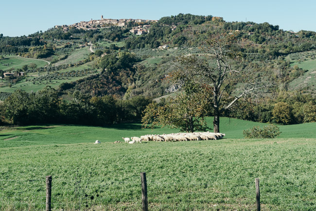 Three Acres Gathering Tuscany