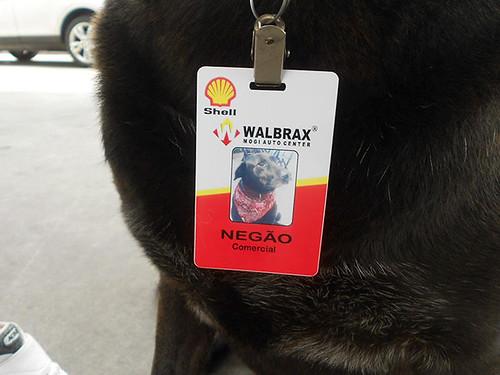abandoned-dog-gas-station-employee-negao-brazil-2