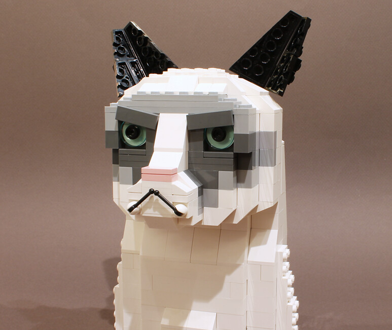 Lego Grumpy Cat Meme Free To Use I Have Not Personaliz Flickr