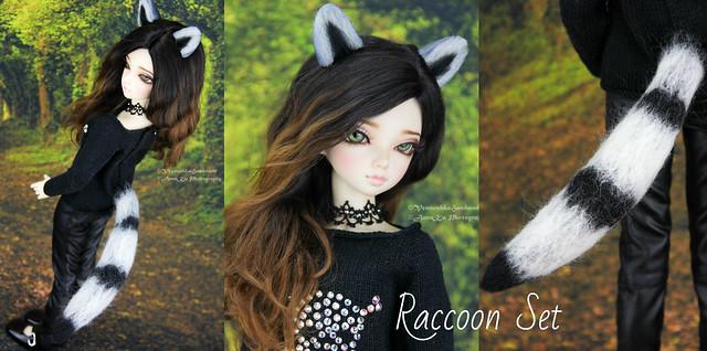 Raccoon set collage