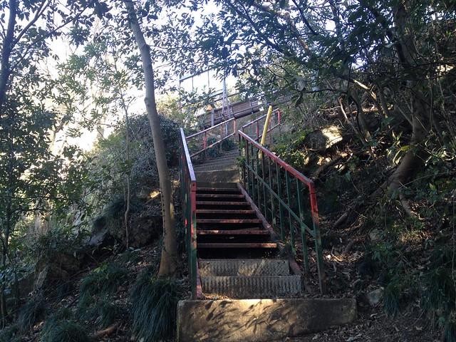 金華山 馬の背登山道 最後の階段