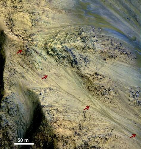 VCSE - Mai kép - Marsi RSL