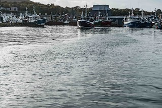 HOWTH FISHING FLEET [OCTOBER 2015]--109457 | by infomatique
