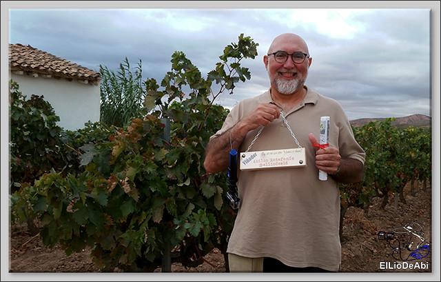 Uvas y Vino haciendo turismo del Vino 1