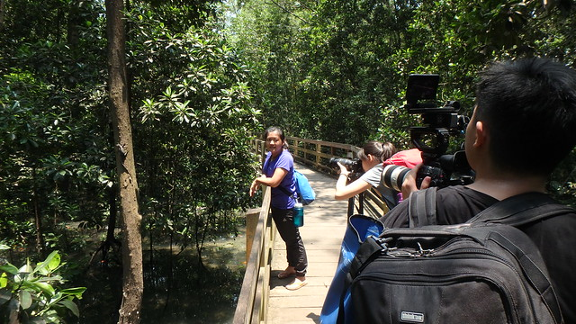 Rachel Quek filming the Restore Ubin Mangroves (R.U.M.) Initiative