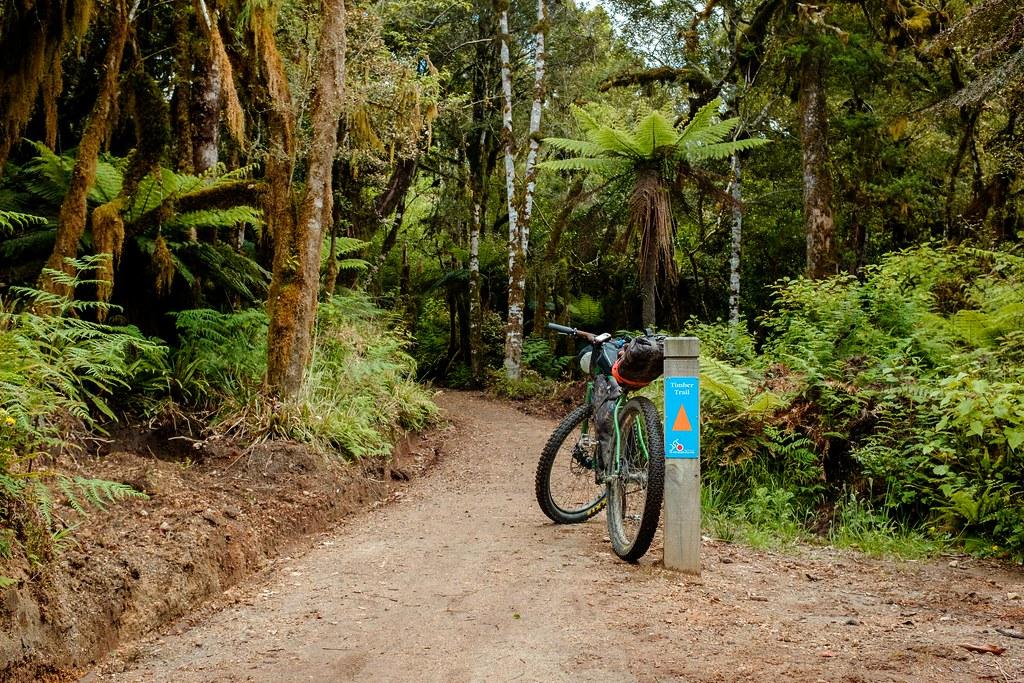 170113_Rotorua to Nat Park -46