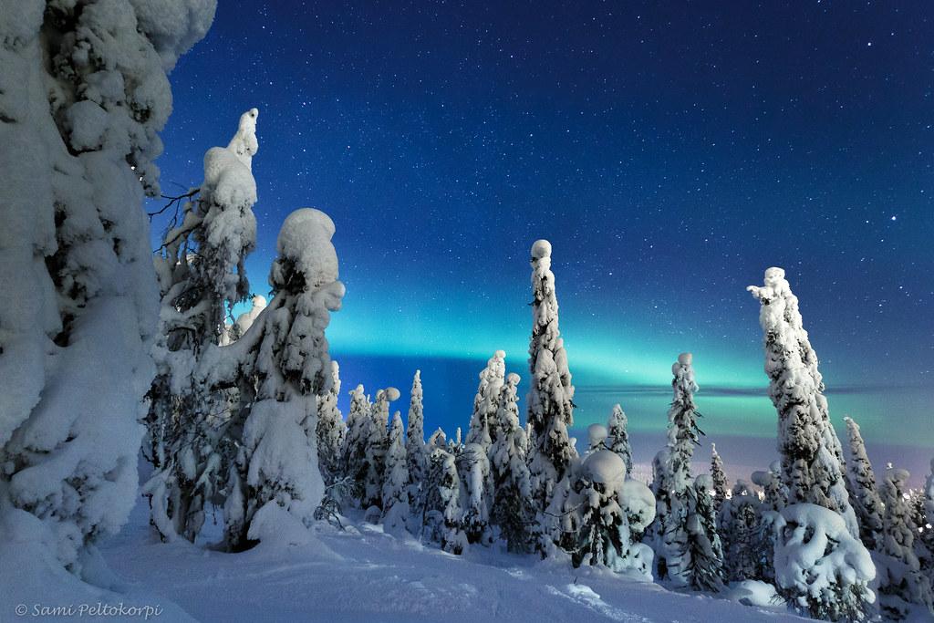 Wintermagic