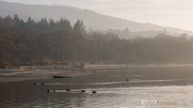 Loch Lomond Shoreline [5D3_4220]