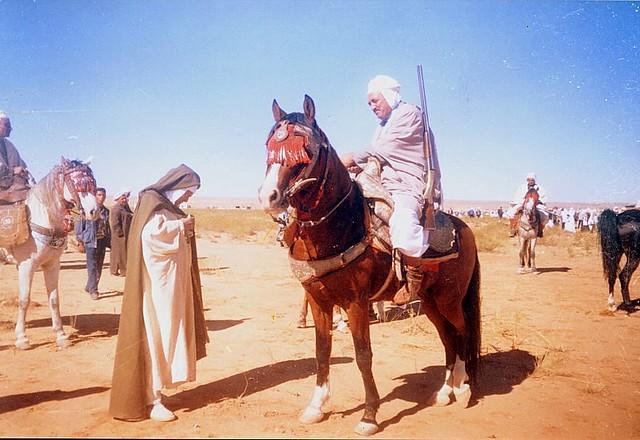 chevalier sur son cheval pdf