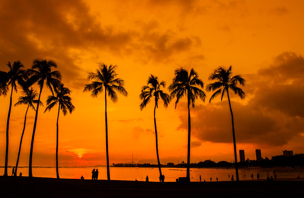 Hawaii Palm Trees Sunset Magic Island Anthony Quintano Flickr