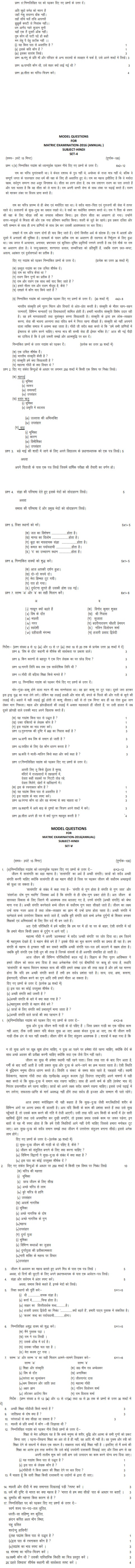 Bihar Board Class X Model Question Papers - Hindi