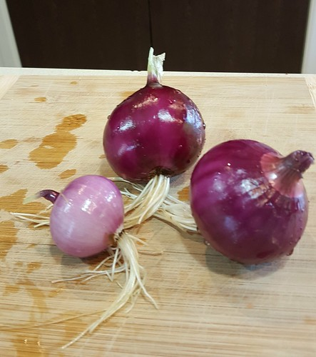 Fully organic, totally home-grown in our veggie patch, red onions!