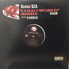 GZA:COLD WORLD REMIX(JACKET A)