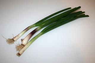 02 - Zutat Frühlingszwiebeln / Ingredient scallions