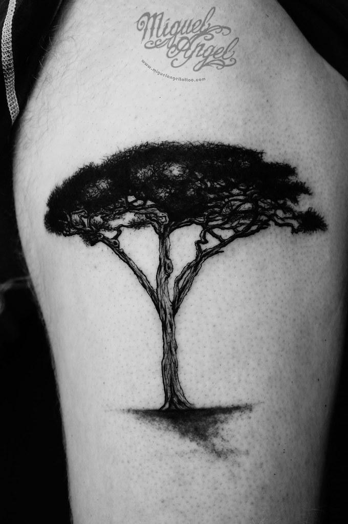 acacia tree tattoo miguel angel custom tattoo artist www m flickr rh flickr com acacia tree tattoo designs acacia tree tattoo designs