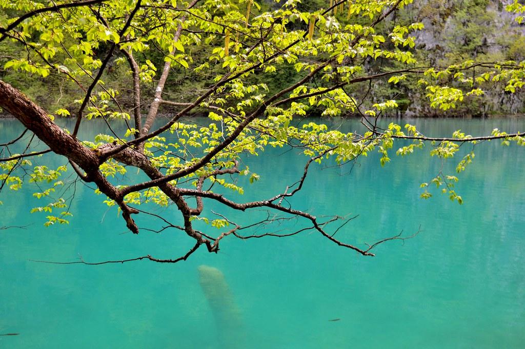 5 feiten over de Plitvice Meren