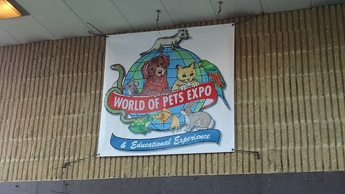 This is where I went today. For only $10 admission I saw all kinds of pets on display. I loved seeing all of the animals.