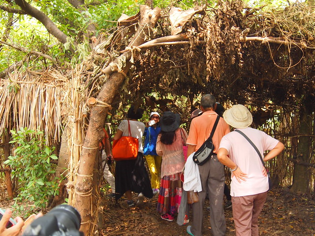 民眾穿越樹窩,猶如回到自然的懷抱,找回安全感和想像力。攝影:李育琴。