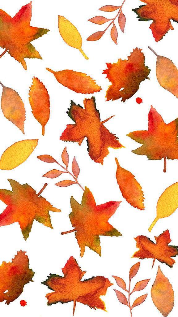 Fall Leaves | Megan Pizzitola | Flickr