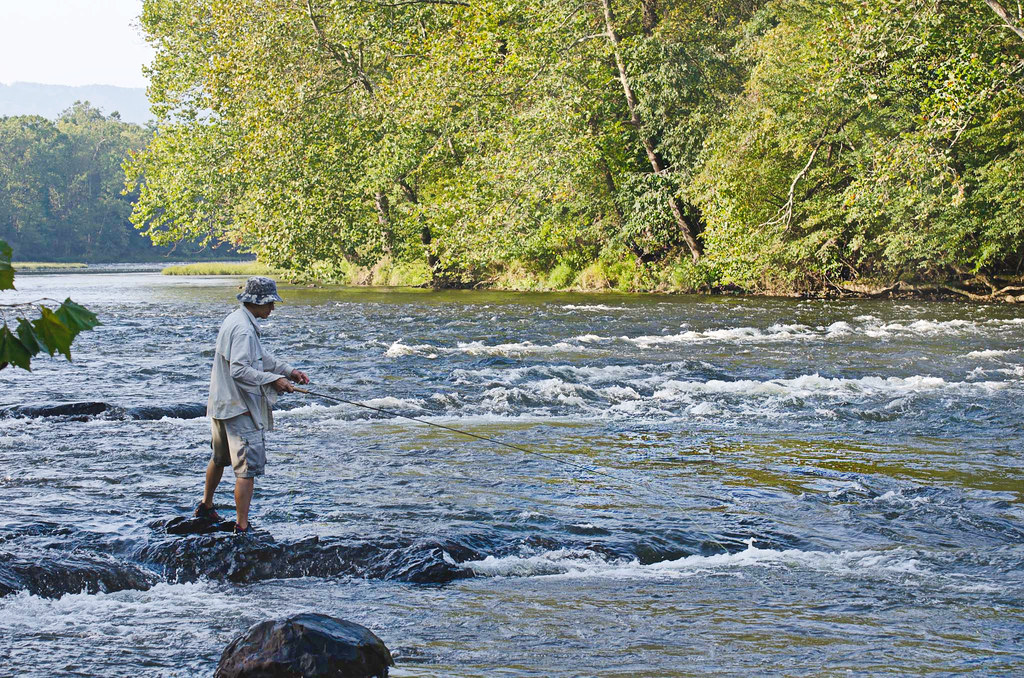 Man fly fishing in the new river at new river state park for Fly fishing virginia