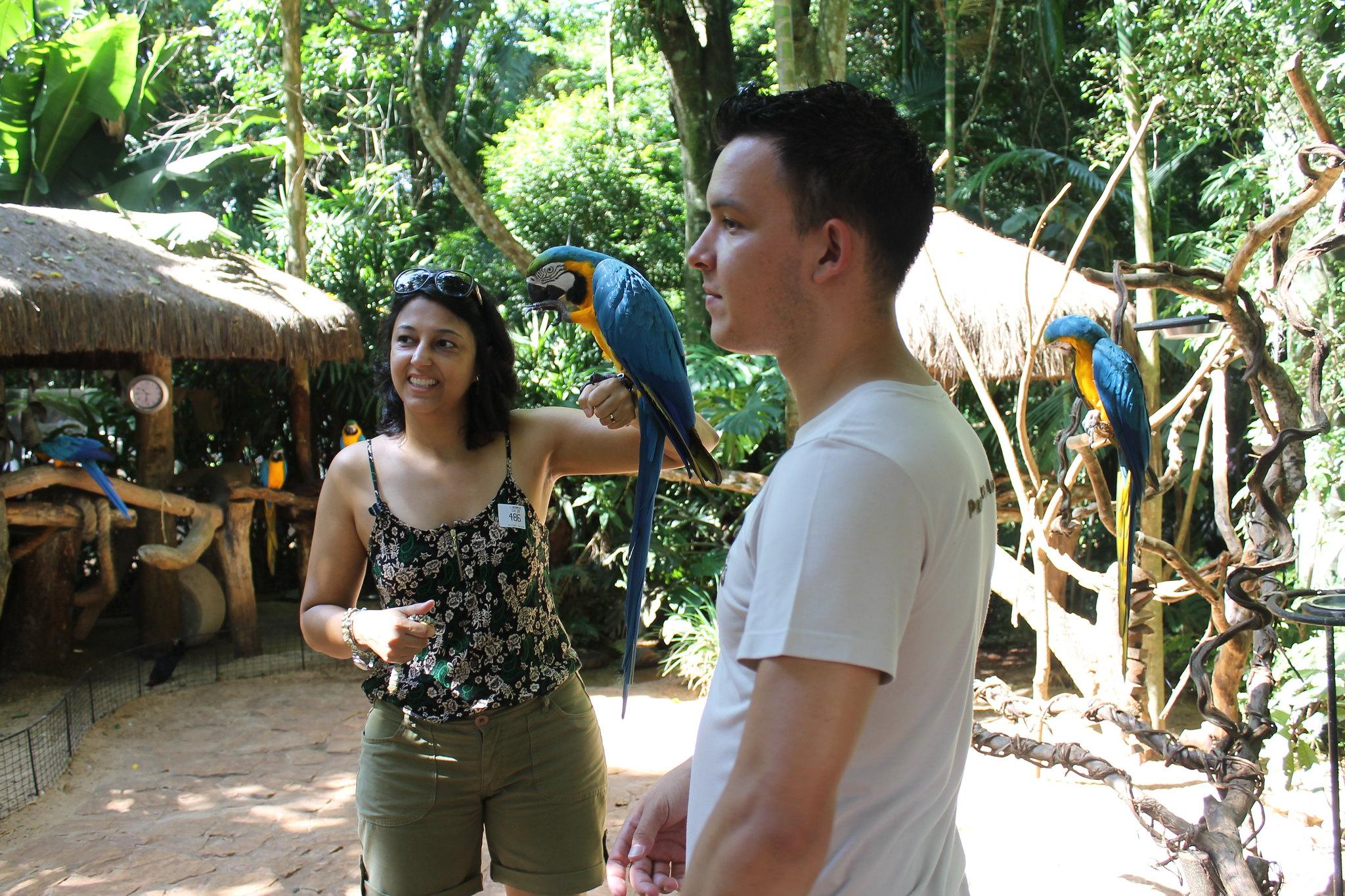 parque-das-aves24
