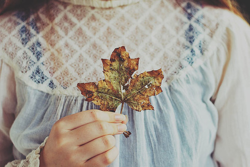 Autumn Leaf | by Kristybee