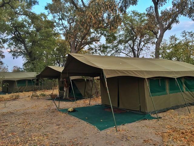 Tiendas de campaña Meru del Campamento móvil de Mopane en Botswana
