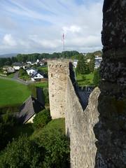 Auf der Stadtmauer von Hillesheim
