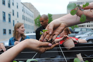 Planting the Truck Farm | by DC Central Kitchen