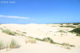 Lake Wau Wauka dunes | by Nick Gale