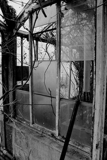 Old Greenhouse | by lostinjersey