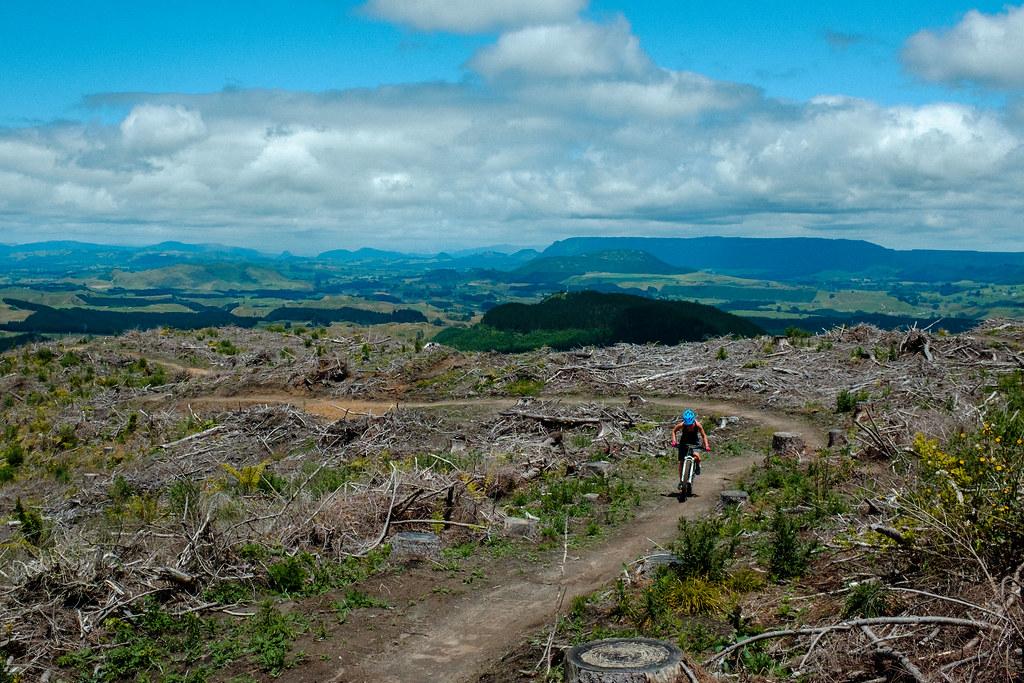 170113_Rotorua to Nat Park -4
